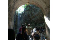 沖縄 ガンガラーの谷 ツアー