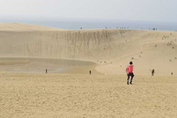 鳥取砂丘の景色