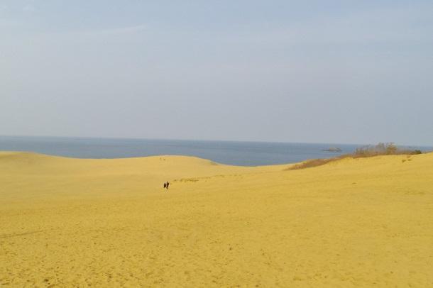 鳥取県にある鳥取砂丘の風景