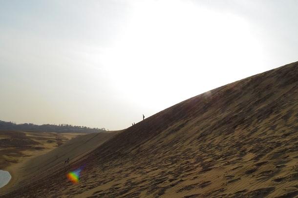 鳥取砂丘にある馬の背