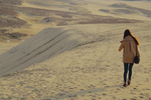 砂丘馬の背