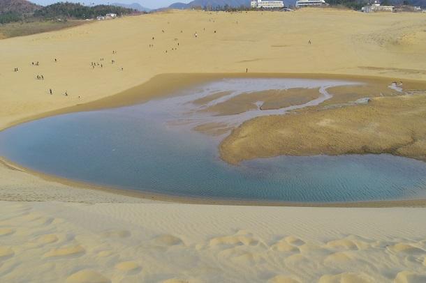 馬の背から見る鳥取砂丘のオアシスは青い