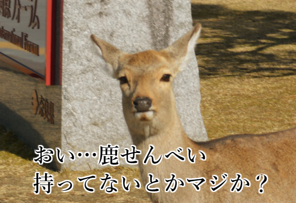鹿せんべい飛ばし大会