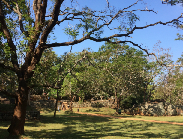 スリランカ世界遺産シーギリヤロックの庭園