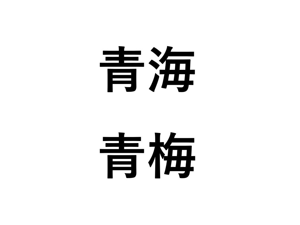 アイドルがよく間違える駅青海と青梅