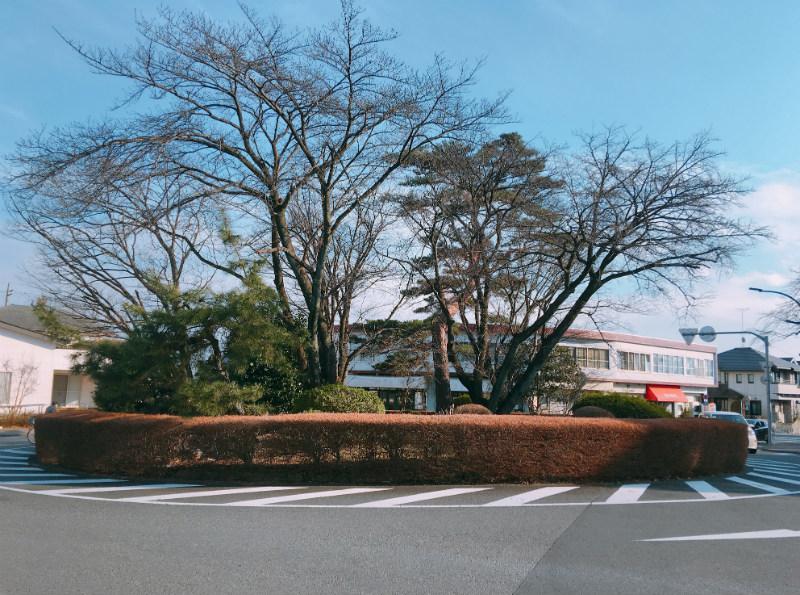聖蹟桜ヶ丘にある冬の耳すまロータリー