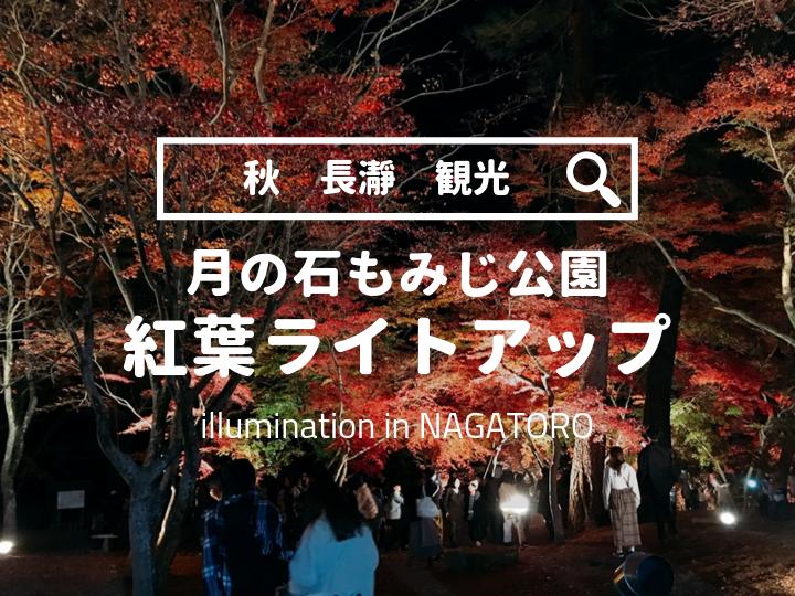 秋の長瀞観光「月の石もみじ公園紅葉ライトアップ」情報まとめ
