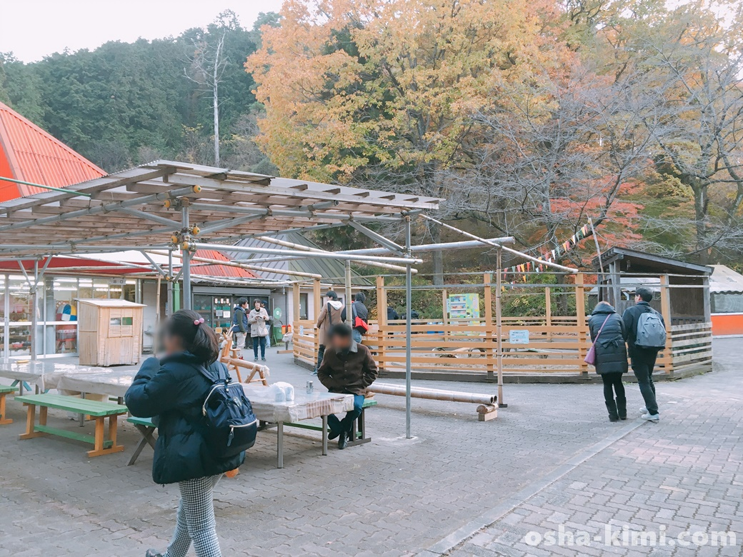 宝登山小動物公園園内