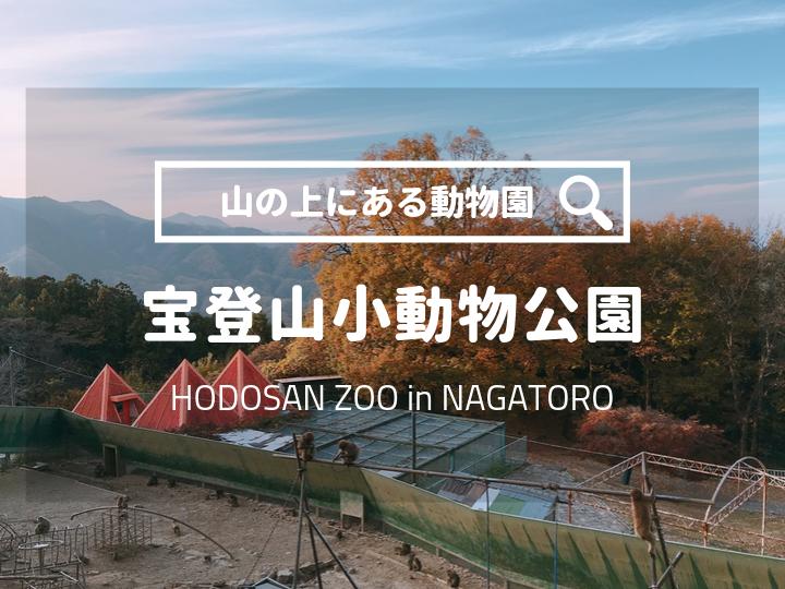 宝登山小動物公園おでかけ情報ブログ