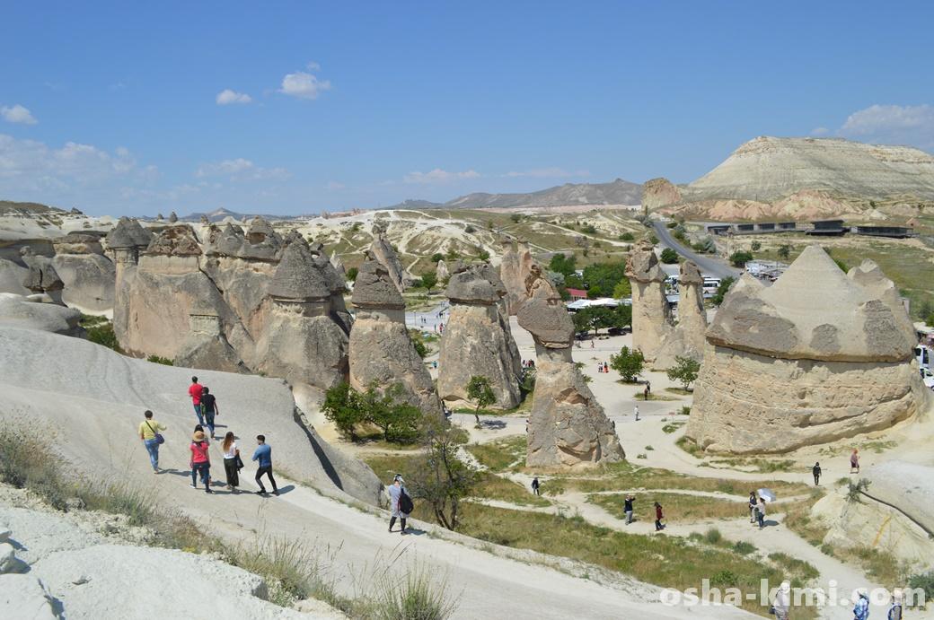 丘の上から見るキノコ岩
