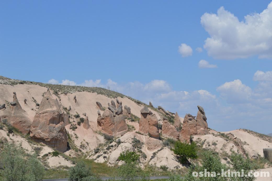 デヴレントの谷にあるイルカ岩