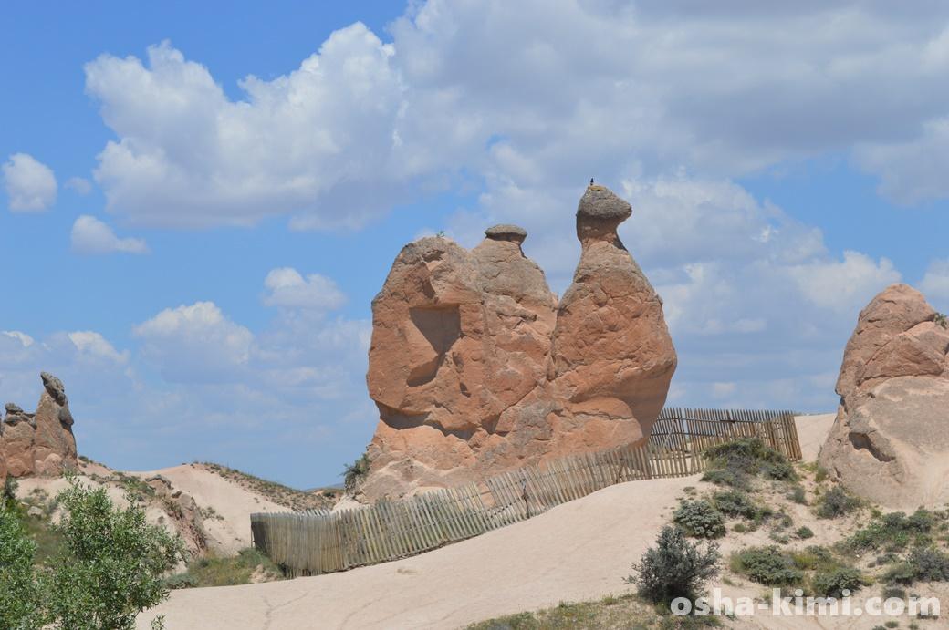 カッパドキア、デヴレントの谷にあるラクダ岩