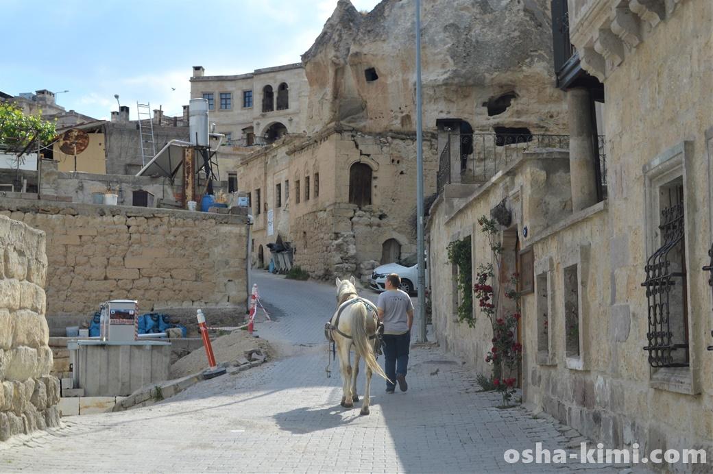 ギョレメの街中を歩く白馬